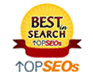 Top SEO Best in Search